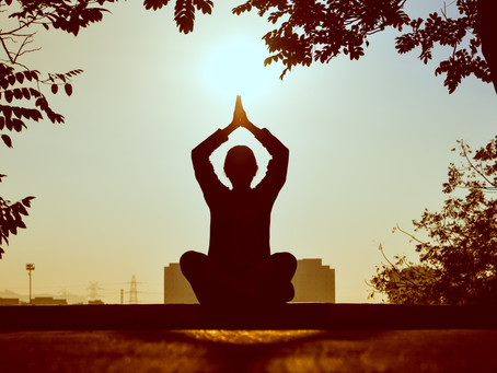 The Dharma and Yoga of Homo Amor: The Next Step in Conscious Evolution