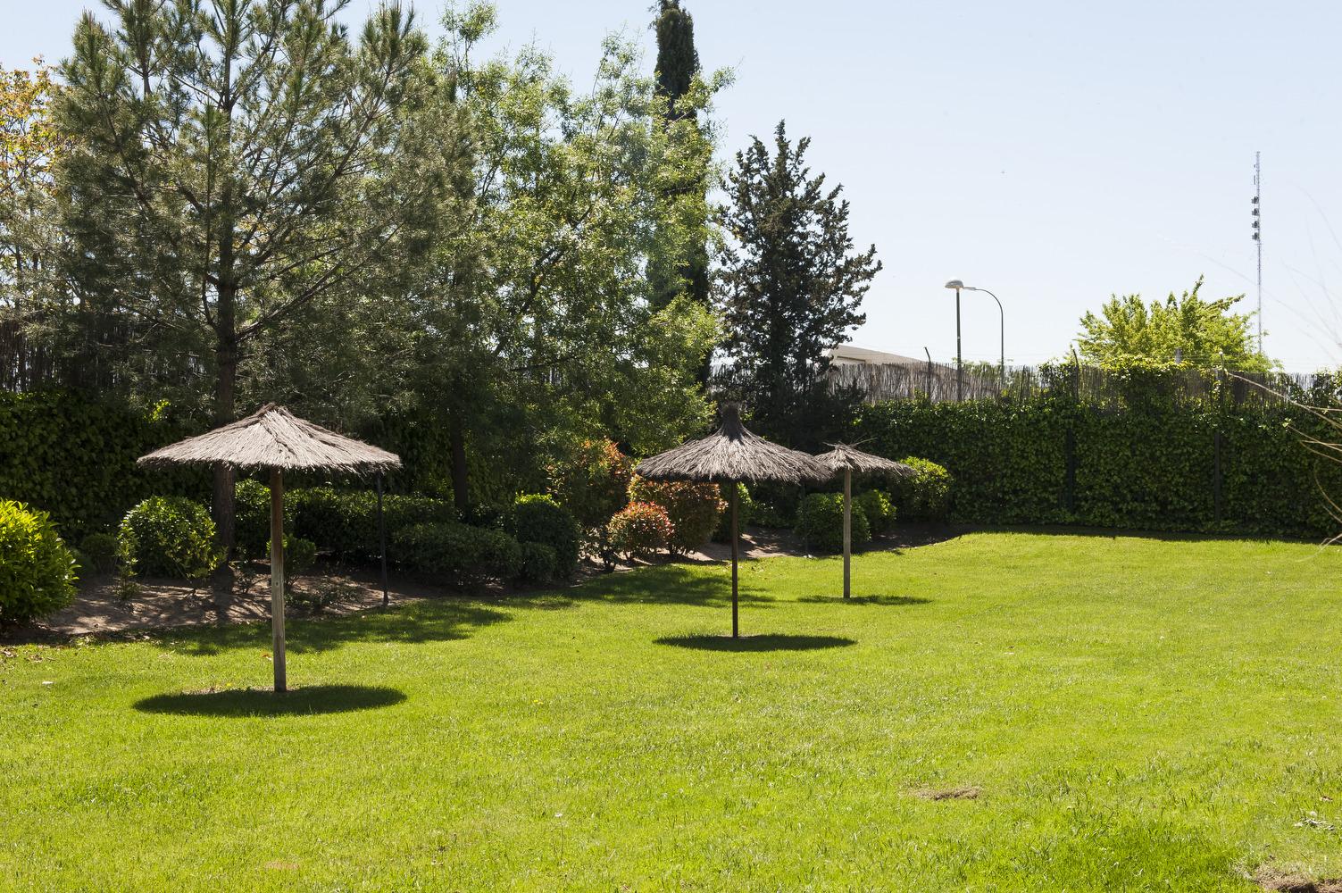 Jardín - piscina