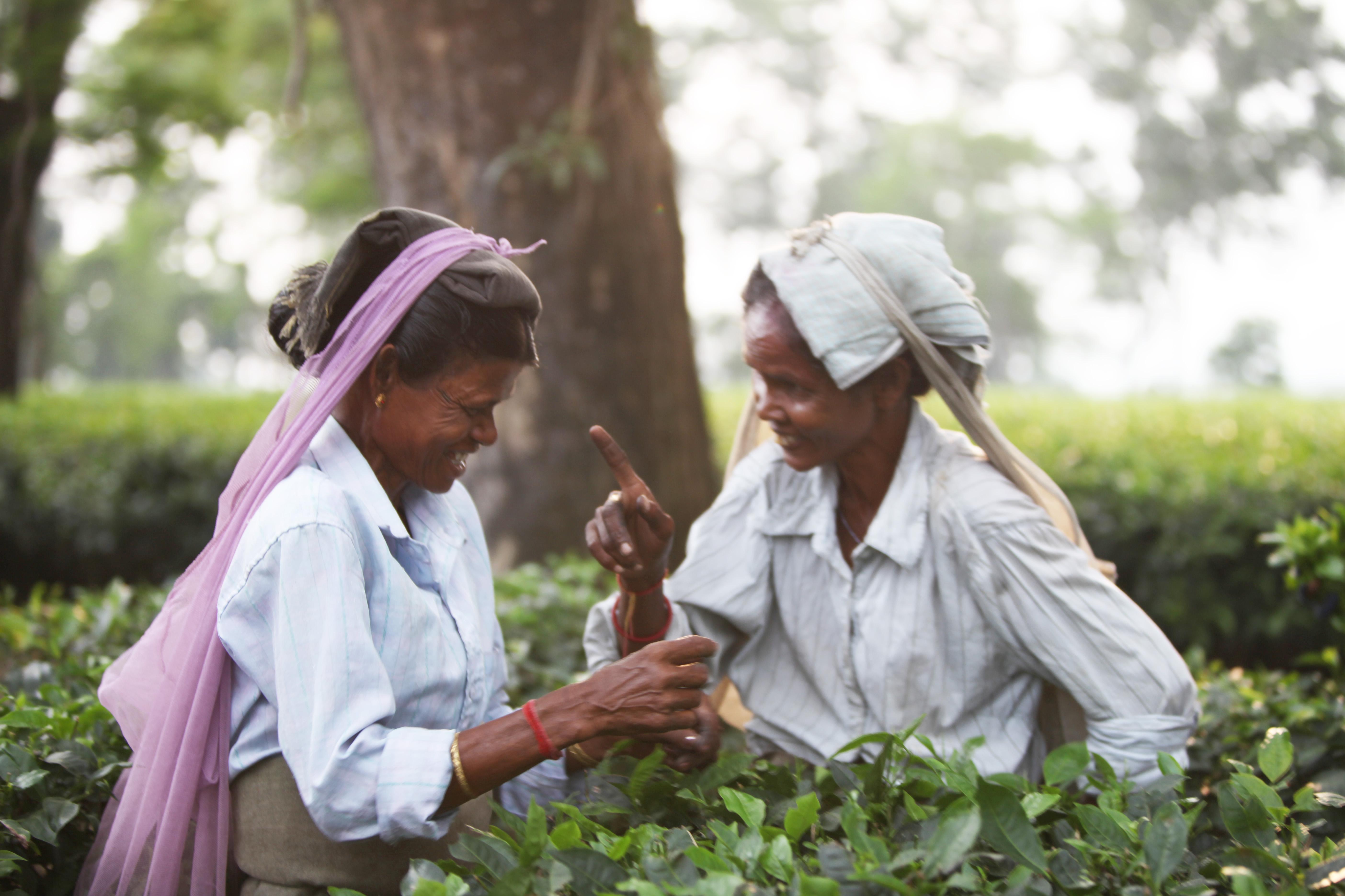 Inde sept 2012 (17)