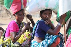 Inde sept 2012 (531)