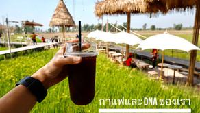 เลือกดื่มกาแฟที่เหมาะกับDNA อย่างไรดี?