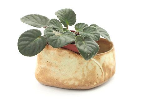 Hand Built Planter for Succulents
