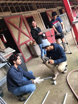 Volunteering at a Horse Ranch