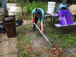 Gainesville Rabbit Rescue