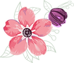 Blume3.png