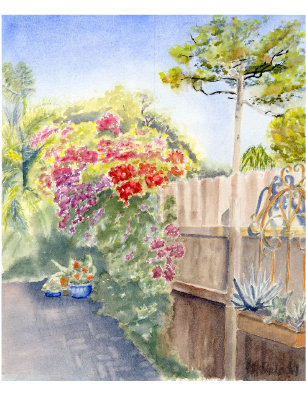 Bougainvillea Path (NC 122)