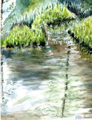 Woodland Pond (NC 135)