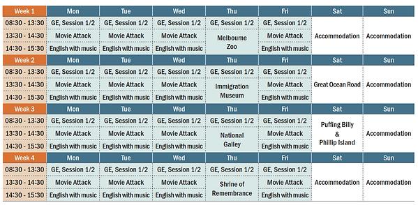 4weeks program.png