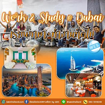 Work and Study in Dubai : เรียนภาษาอังกฤษที่ดูไบ