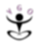 logo_vgo.png