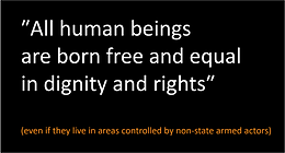 Leaving no one behind: promoting respect for fundamental human rights by non-state armed actors