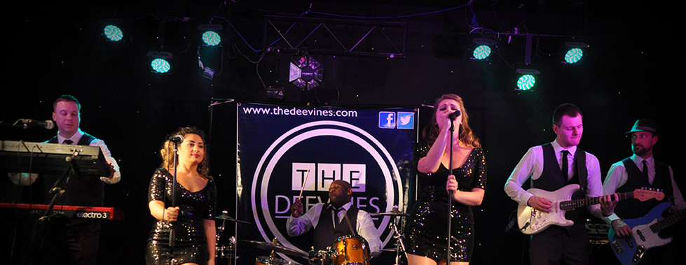 The DeeVines Function Band