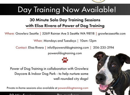 Day Training Now Available at Growlerz Seattle!