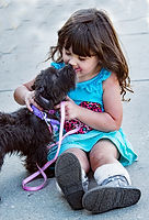 Black terrier dog kissing the face of a small girl
