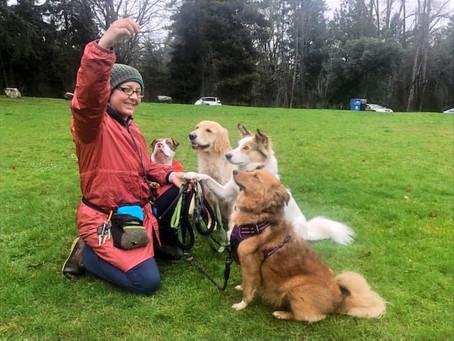Rainy Day Training Walk, With Pork