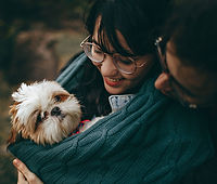 Young couple holding their Shih Tzu dog in a sweater while looking at him lovingly