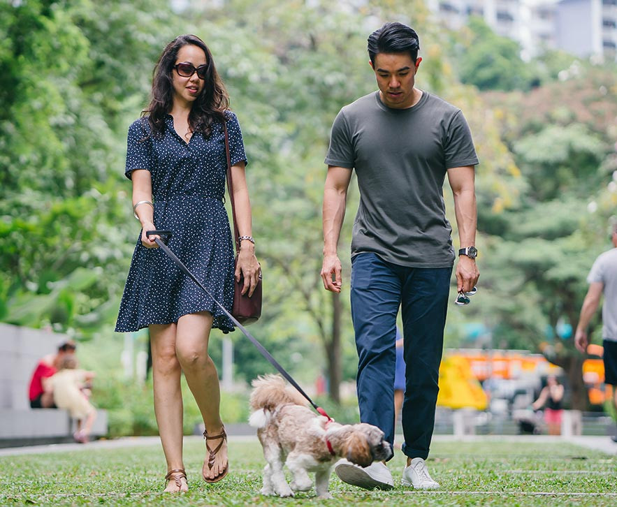 Young man and woman walking small dog in park