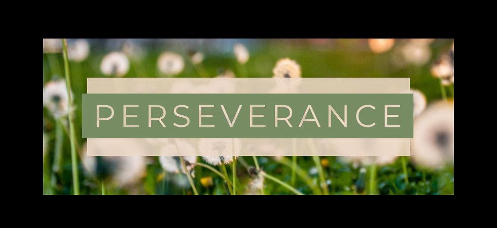 perseverance1.jpg