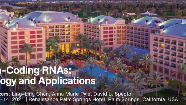 """Presentation at Keystone Meeting """"Non-Coding RNAs: Biology and Applications"""""""