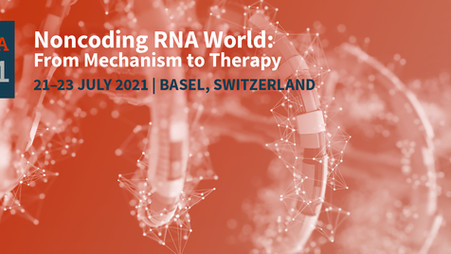 GOLD Lab organises international ncRNA conference