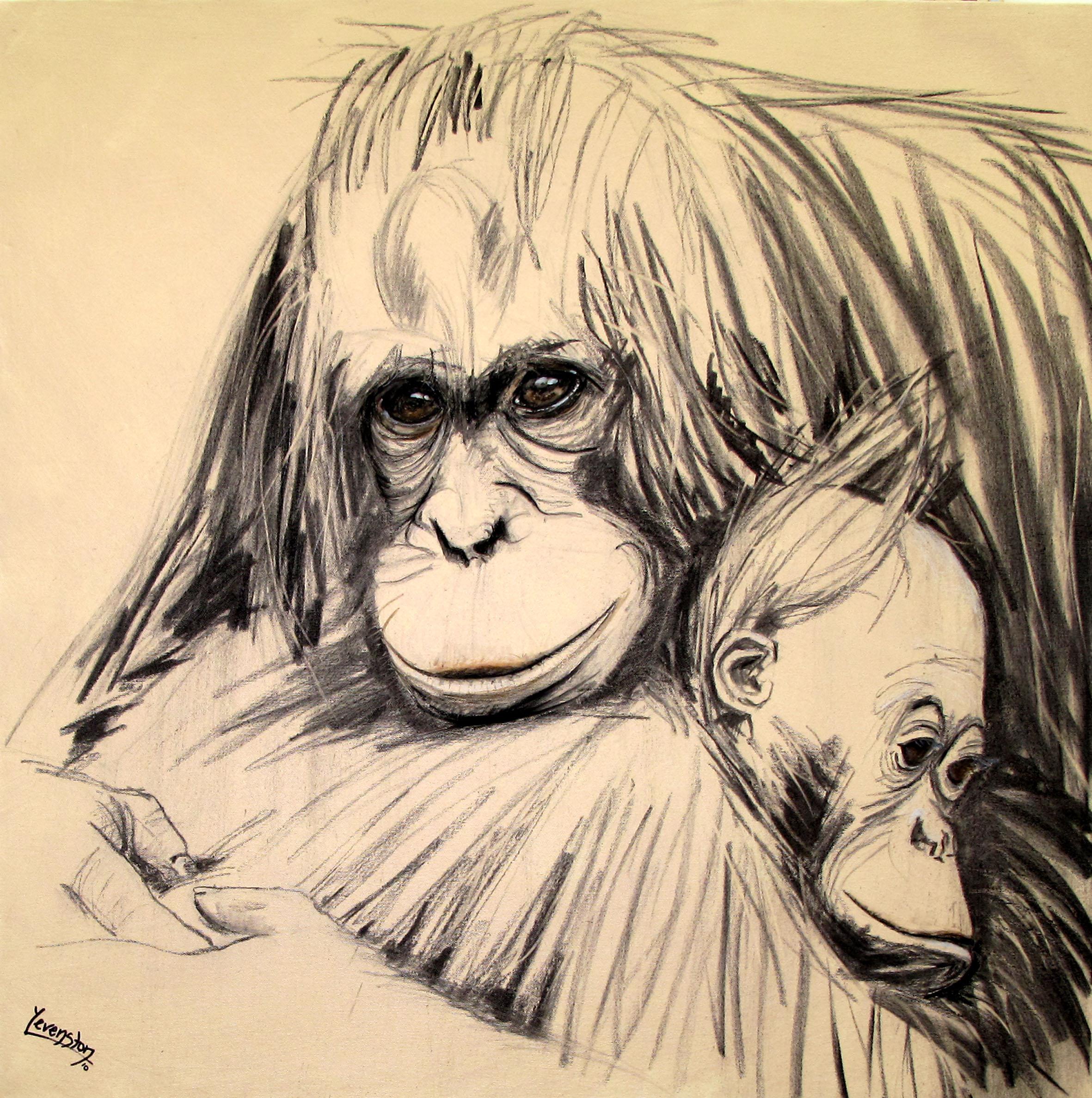 Orangutan_Cuddles_1mg.jpg