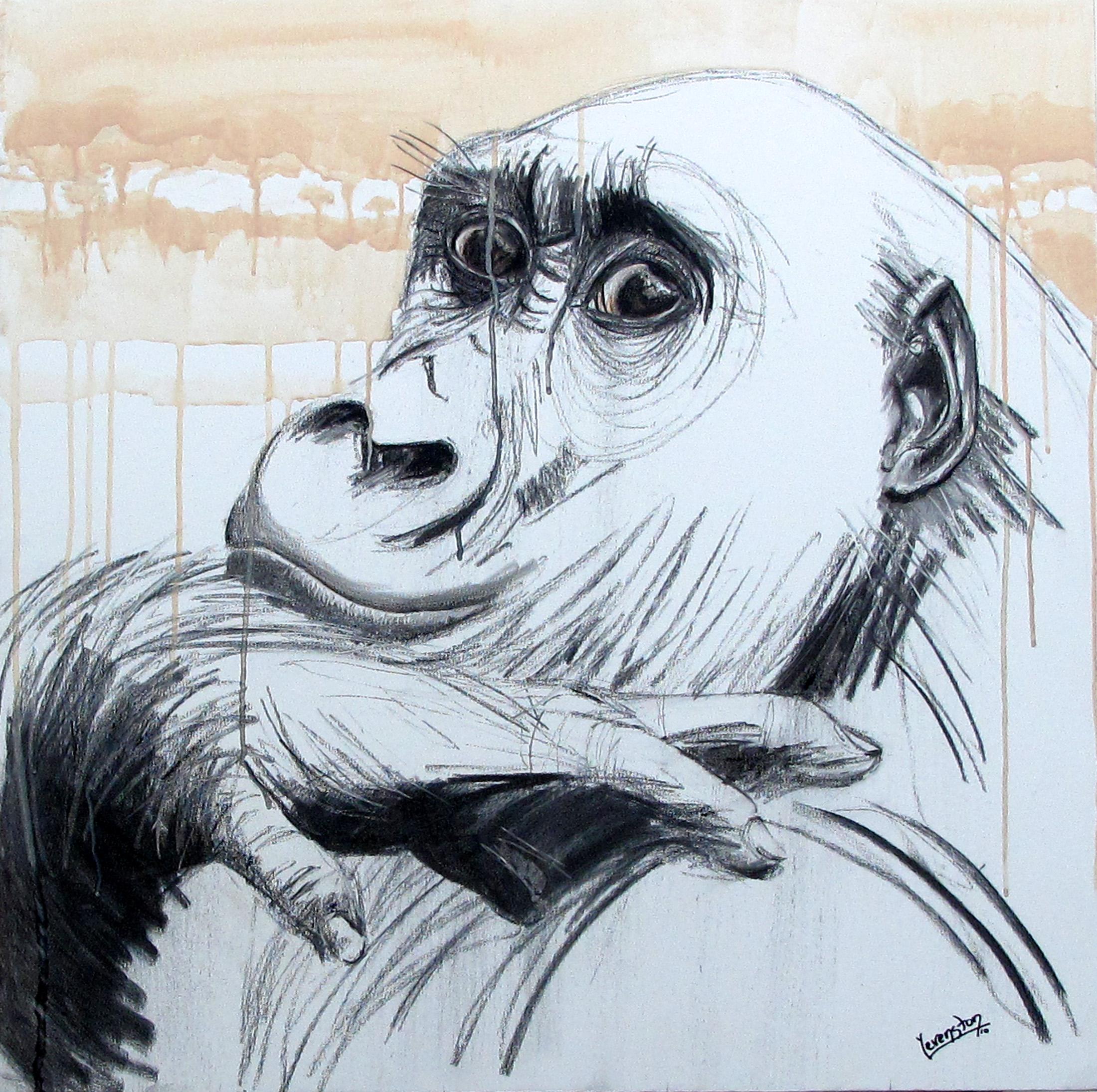 Gorilla_Frankie.jpg