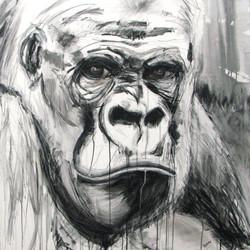 Gorilla_King Confident.jpg