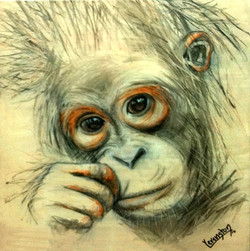 Orangutan_Future_small canvas.jpg