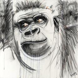 Gorilla Hold the Phone 2