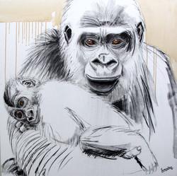 Gorilla Future Growth