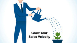 Grow Your Sales Velocity