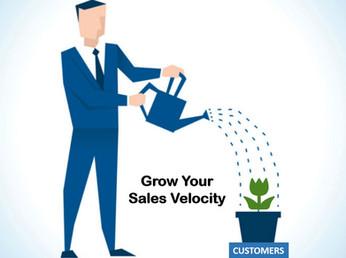 Grow Your Sales Velocity