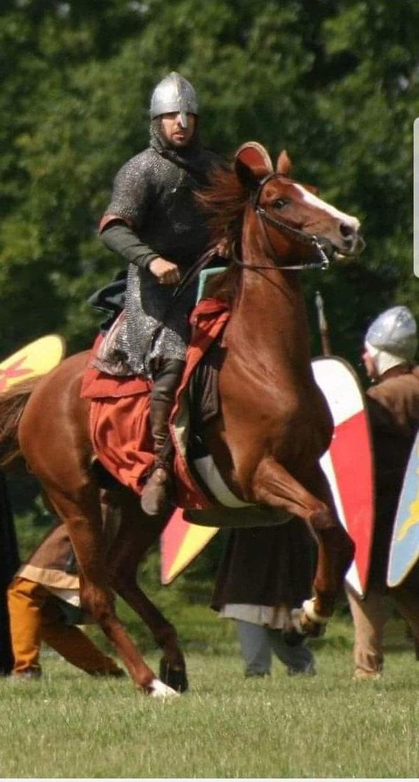 nigel amos cropped image horse.jpg