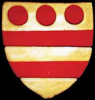 Wake coat of Arms.jpg