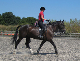 Alison Lunge onSeth Adult2dy.jpg