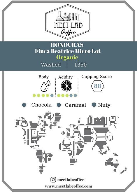Honduras Finca Beatrice Micro Lot / Organic