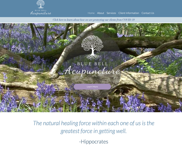 Blue Bell Acupuncture