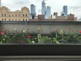 Chelsea Office Terrace