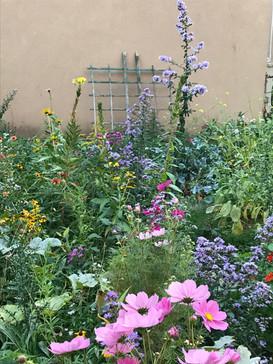 Ridgewood Veggie Garden