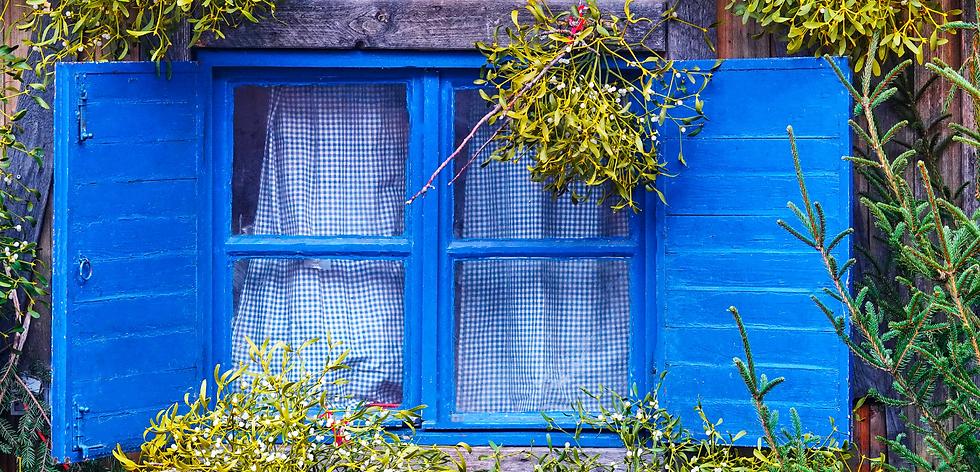 window copy.png