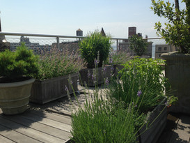 Brooklyn Heights Roof Deck