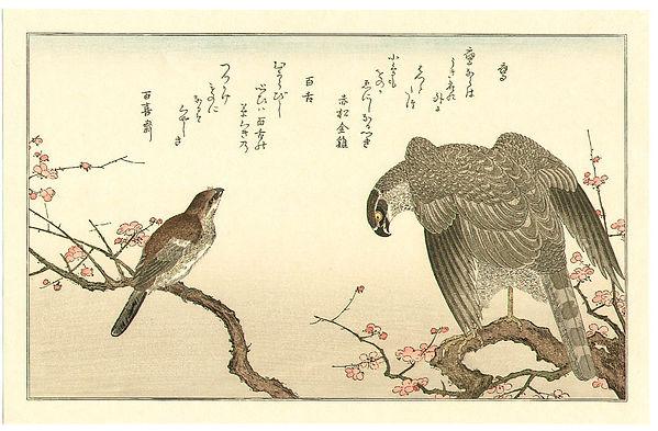 Utamaro Hawk and Shrike 1790.jpg