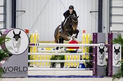 Dexter in the jump off in the Grand Prix last week at WEC!  #windridgefarm #2nd #grandprix #showjump