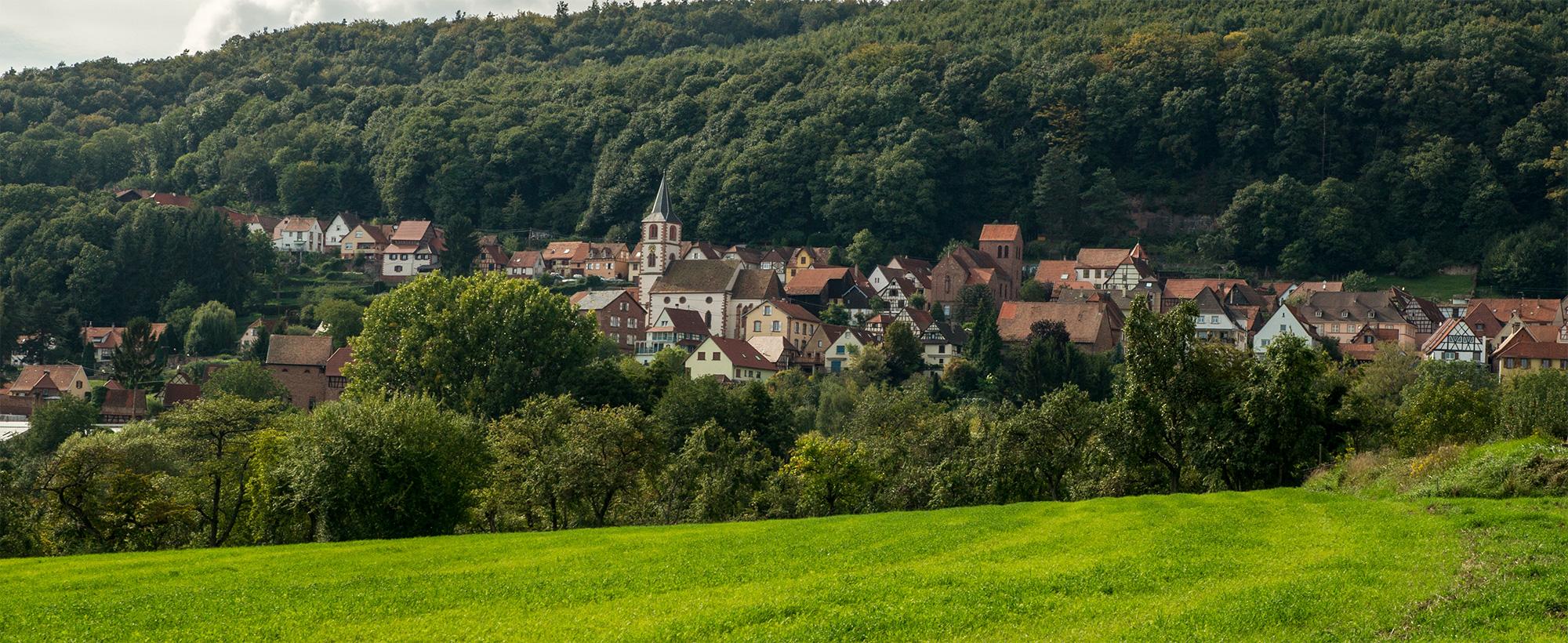 Vue d'Oberbronn