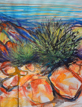 Of Spinifex and Stone