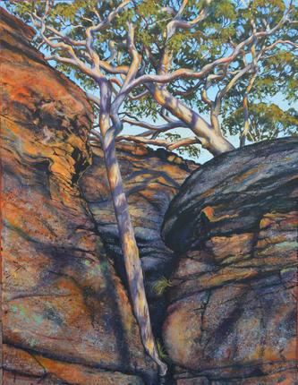 Ganguddy Country (Winner - 2015 Barbara Bennett Memorial Award, Lachlan Valley Biennial Art Awards, Cowra Regional Gallery)