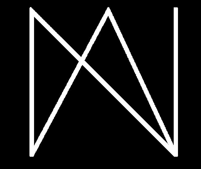 Natural Asthetik logo