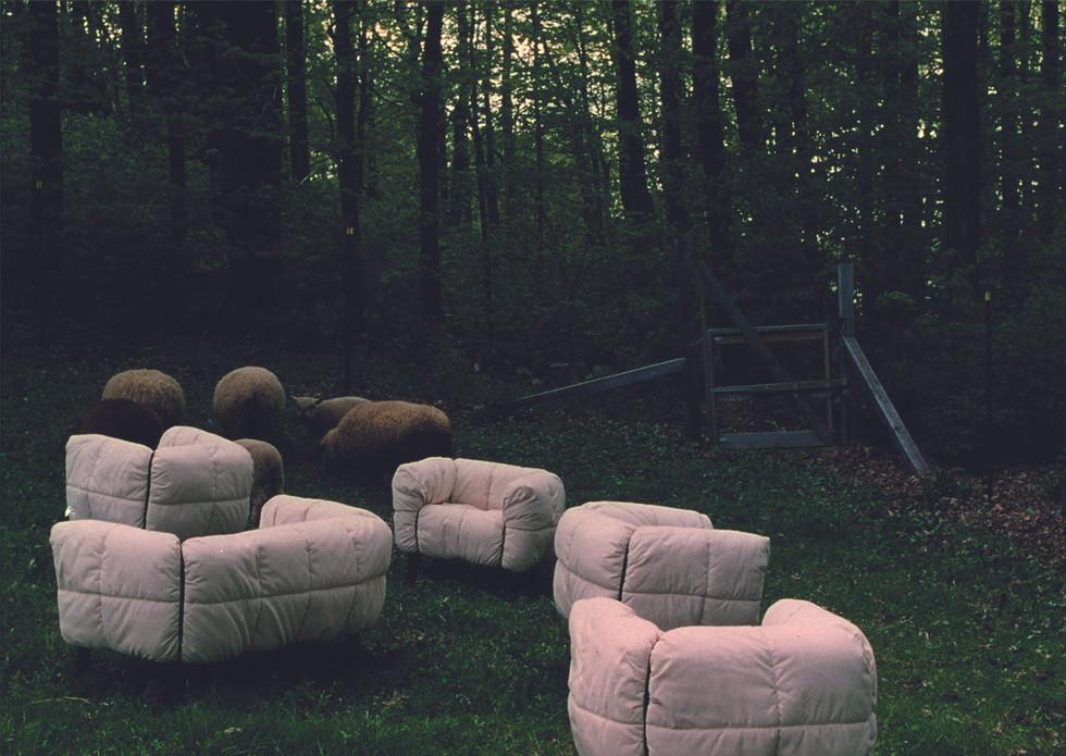 arflex-pecorelle-design-cini-boeri_story