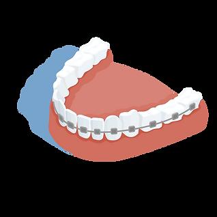ortodoncia.png