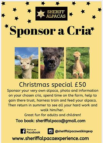 sponsor a cria 11.jpg